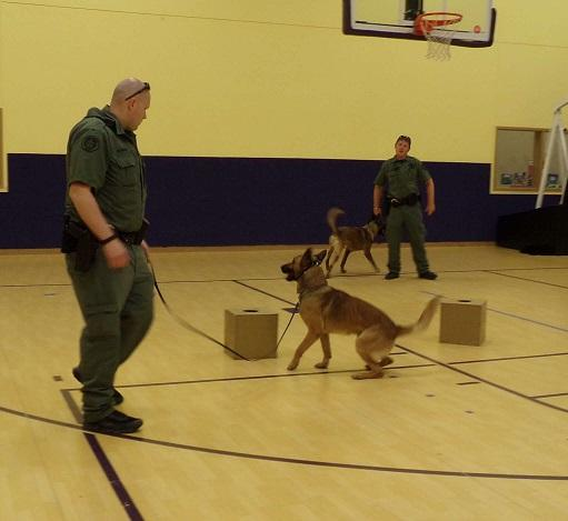 K9 Mail Search